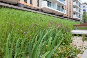 Bristol Harbourside Landscaping