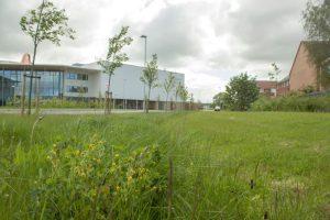 All Saints Academy Cheltenham