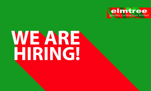 Elmtree Job Vacancy