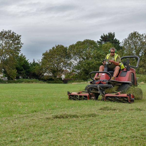 grass cutting copy